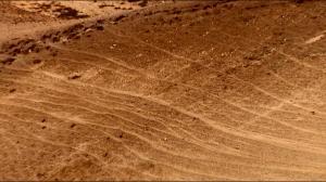 """straight paths"" on a Negev hillside"