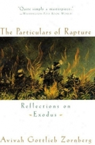 the-particulars-of-rapture