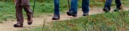 the Way_feet