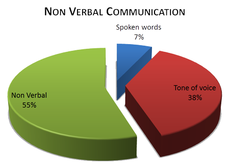 nonverbal verbal communication essay